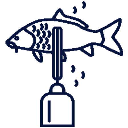 Picture for category Fish Scalers