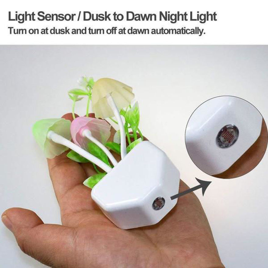 Picture of Night Light Mushroom Lamp (Colorful)
