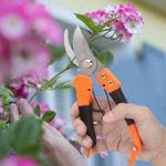 Picture of Garden Flower Cutter