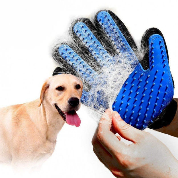 Picture of Dog Cleaner Gloves